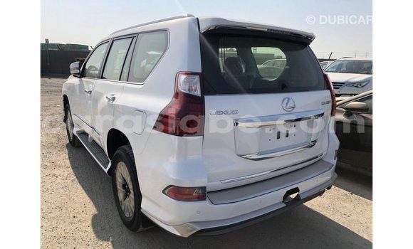 Acheter Importé Voiture Lexus GX 460 Blanc à Import - Dubai, Togo