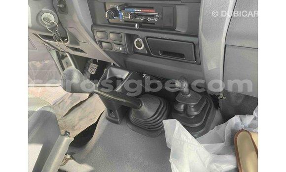 Acheter Importé Voiture Toyota Land Cruiser Blanc à Import - Dubai, Togo