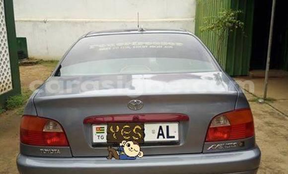 Acheter Occasion Voiture Toyota Avensis Gris à Adawlato au Togo
