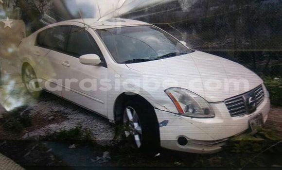 Acheter Occasion Voiture Nissan Maxima Blanc à Adawlato au Togo