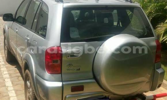 Acheter Occasions Voiture Toyota RAV4 Gris à Adawlato au Togo