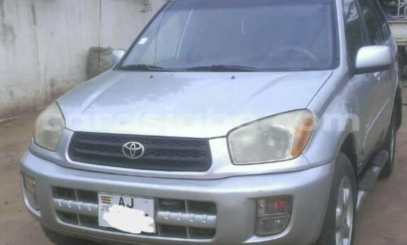 Acheter Occasion Voiture Toyota RAV4 Gris à Adawlato au Togo