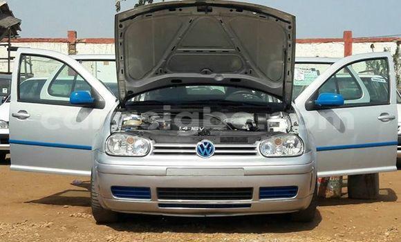 Acheter Occasion Voiture Volkswagen Golf Gris à Adawlato au Togo