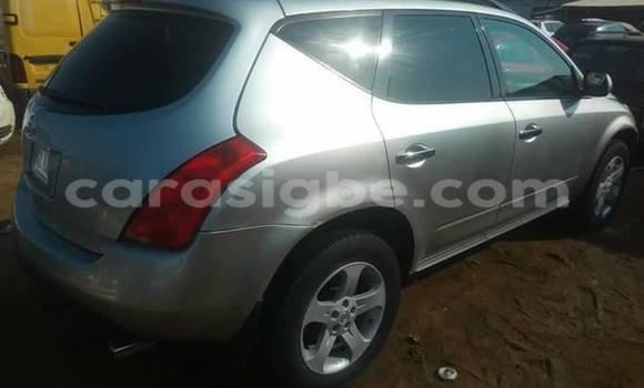 Acheter Occasion Voiture Nissan Murano Gris à Adawlato, Togo