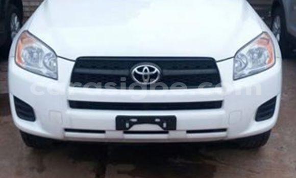 Acheter Occasion Voiture Toyota RAV4 Blanc à Adawlato au Togo