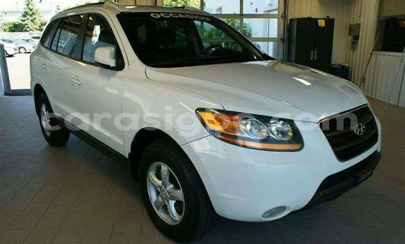 Acheter Occasion Voiture Hyundai Santa Fe Blanc à Adawlato, Togo