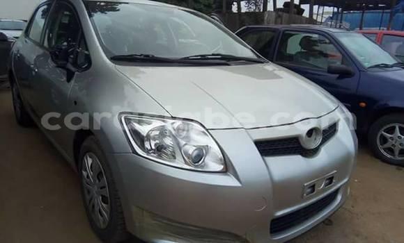Acheter Occasions Voiture Toyota Auris Gris à Adawlato, Togo