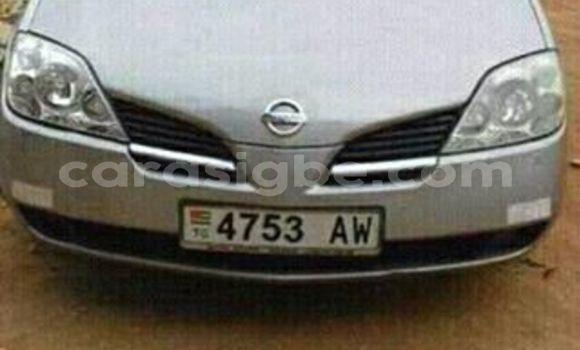 Medium with watermark 18952779 709237862582138 3608237861038673941 n