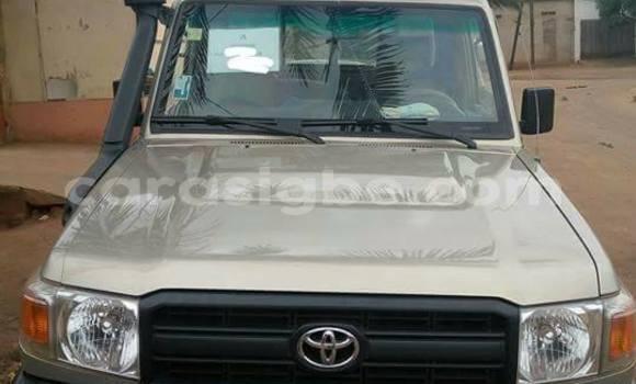 Acheter Occasion Voiture Toyota Land Cruiser Gris à Lomé au Togo