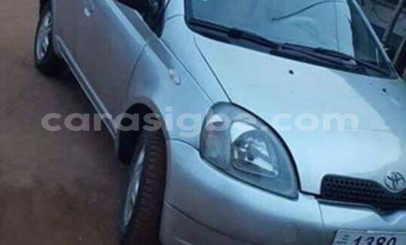 Acheter Occasion Voiture Toyota Yaris Gris à Adawlato, Togo