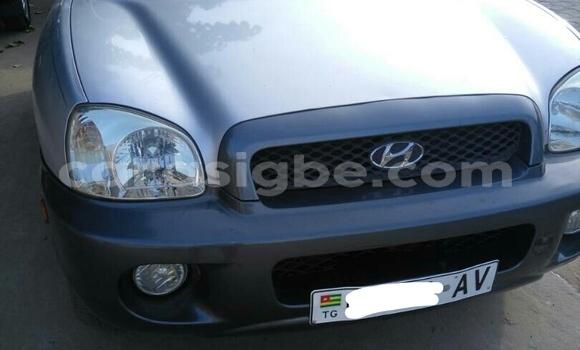 Acheter Occasion Voiture Hyundai Tucson Gris à Lomé au Togo