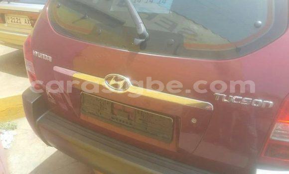 Acheter Occasion Voiture Hyundai Tucson Rouge à Adawlato au Togo