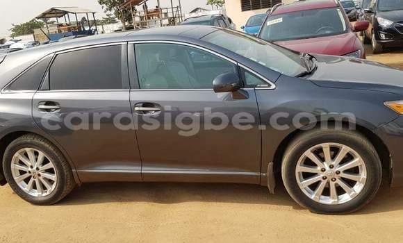 Acheter Occasion Voiture Toyota Venza Marron à Lomé au Togo