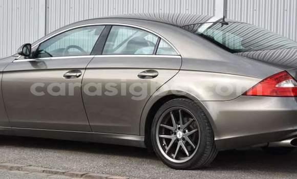 Acheter Occasions Voiture Mercedes‒Benz CLS–Class Marron à Lomé au Maritime