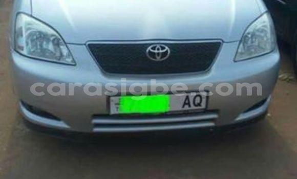 Acheter Occasion Voiture Toyota Corolla Gris à Lomé, Maritime