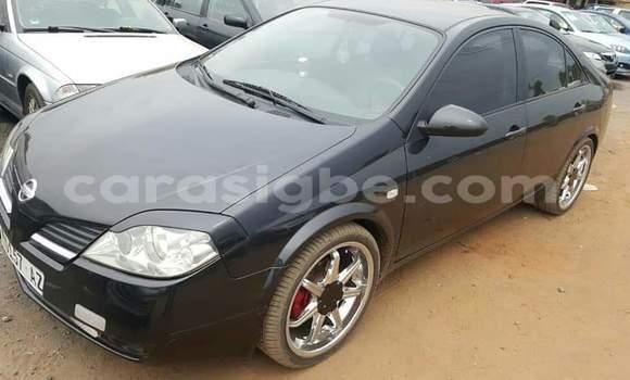 Acheter Occasion Voiture Nissan Primera Noir à Lomé, Maritime