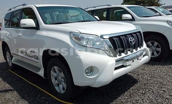 Acheter Occasion Voiture Toyota Prado Blanc à Lomé, Maritime