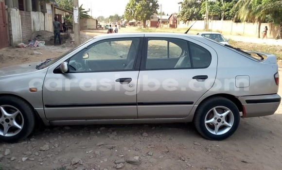 Acheter Occasion Voiture Nissan Primera Gris à Lomé, Maritime